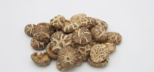 грибы шиитаке в борьбе против рака