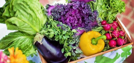 диеты с низким содержанием жиров при раке