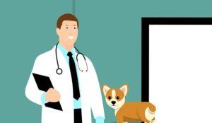 Вопросы к онкологу